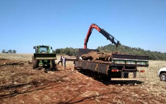Polícia Federal e ICMBio flagram desmatamento no Parque Nacional do Iguaçu  - Notícias - Plantão Diário