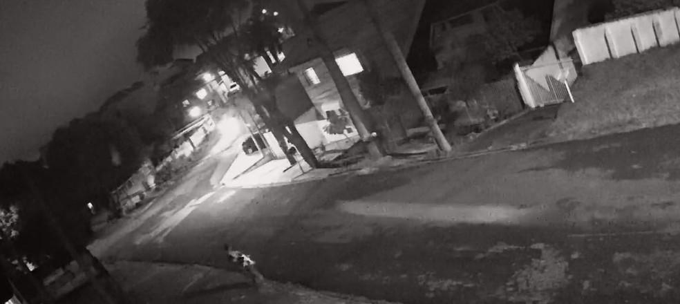 Imagem mostra o suspeito carregando o cachorro morto, de acordo com a  Polícia Civil — Foto: Reprodução/Polícia Civil