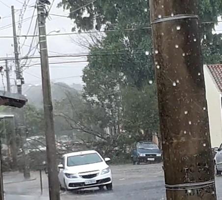 Chuva alaga ruas e derruba árvore em Bauru