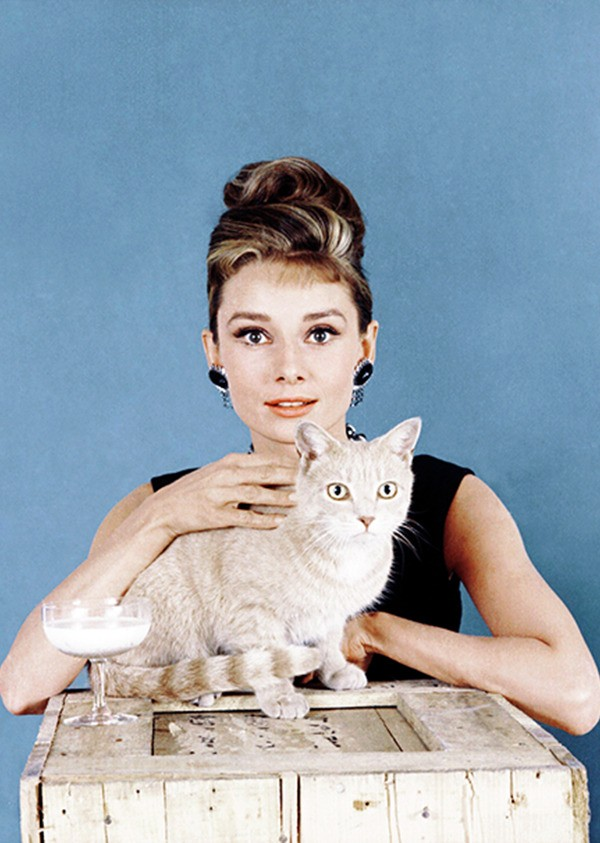 Audrey Hepburn (Foto: Reprodução)