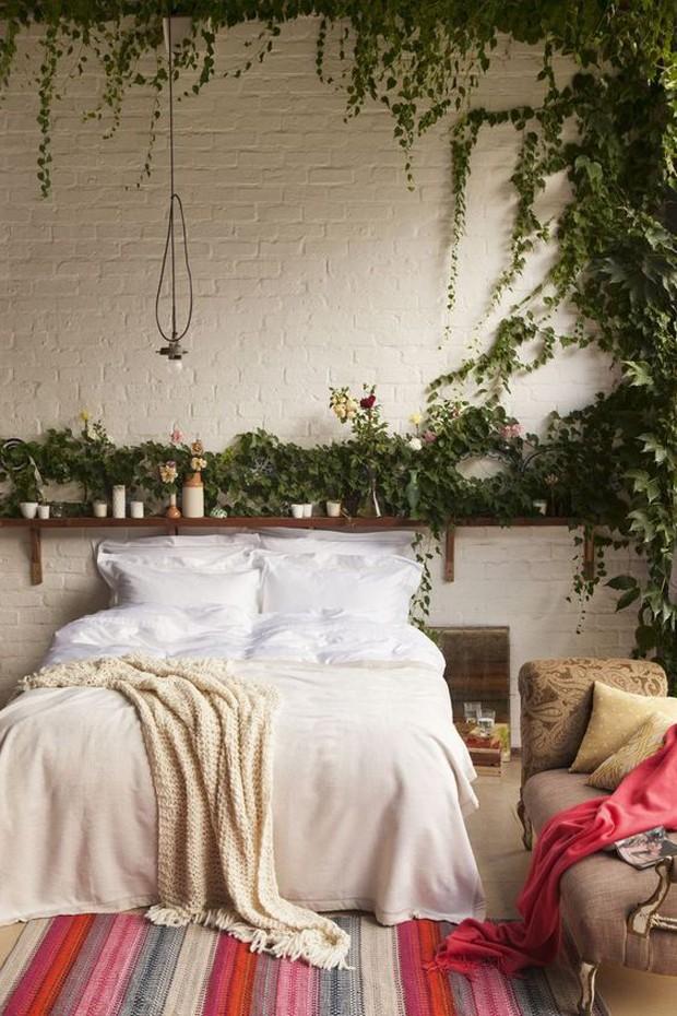 Trepadeiras podem ficar lindas em qualquer cômodo (Foto: Pinterest/Reprodução)