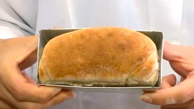 Pesquisadoras dizem que as baratas podem ser usadas para produzir outros alimentos (Foto: Divulgação via BBC News Brasil)