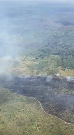 Incêndio na Terra Indígena Arariboia é controlado, anuncia Ibama  - Notícias - Plantão Diário