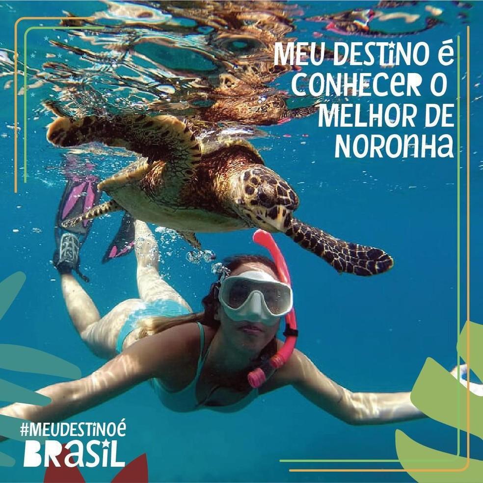A pessoa pode ser incluida nas fotos da campanha — Foto: Secretaria de Turismo/Divulgação