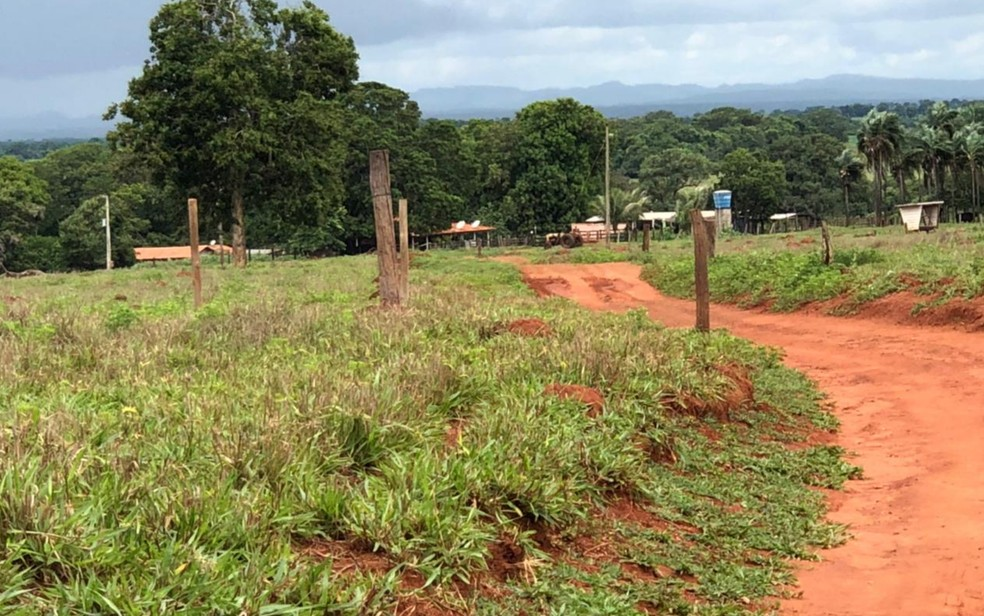 Fazenda onde José Aparecido Diogo foi morto, em Montes Claros de Goiás — Foto: Reprodução/TV Anhanguera