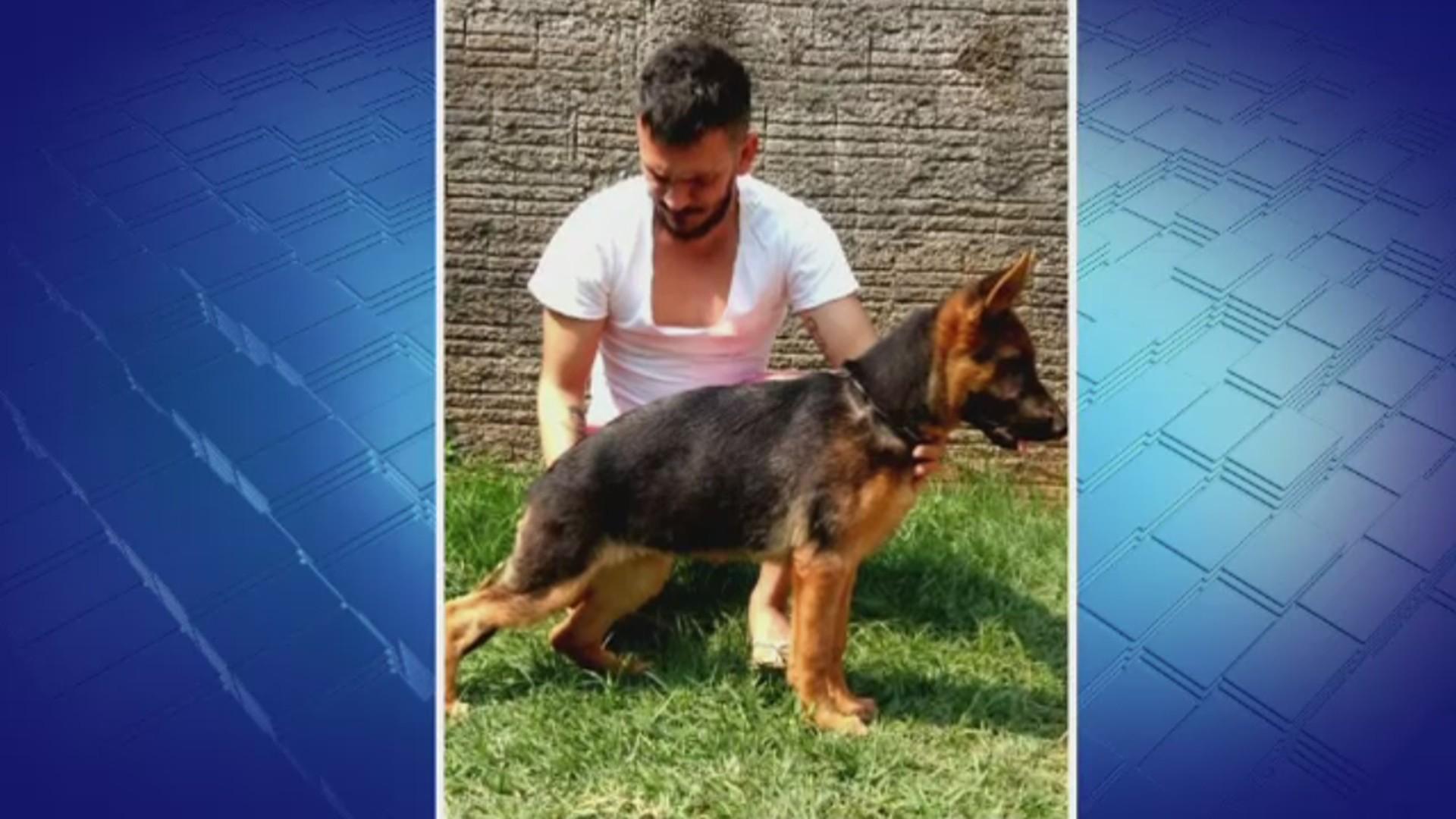 Em Rio Branco, vídeo flagra homem furtando cadela em frente a casa de dono