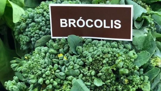 Receitas com brócolis: confira 4 sugestões simples e fáceis