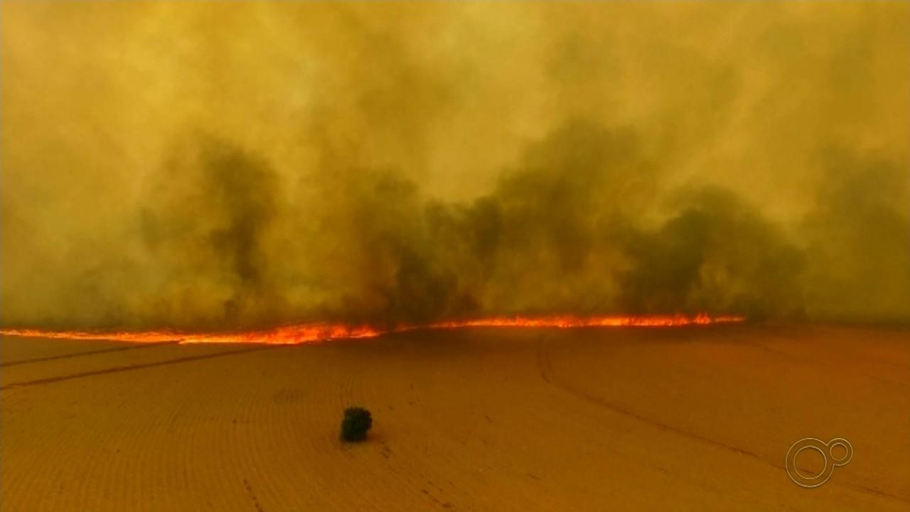 Queimadas derrubam a qualidade do ar em Marília