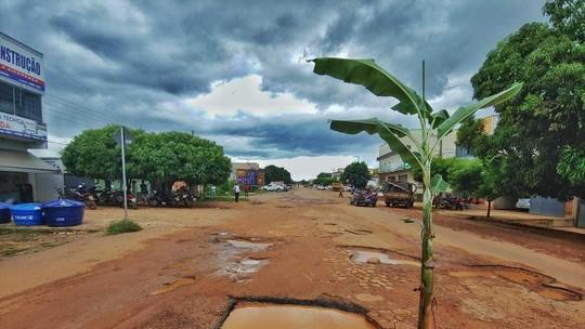 Moradores plantam bananeira em protesto contra rodovia esburacada no Sul do Piauí