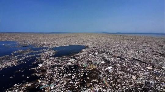 Estudo conclui que toneladas de plástico vão parar na natureza