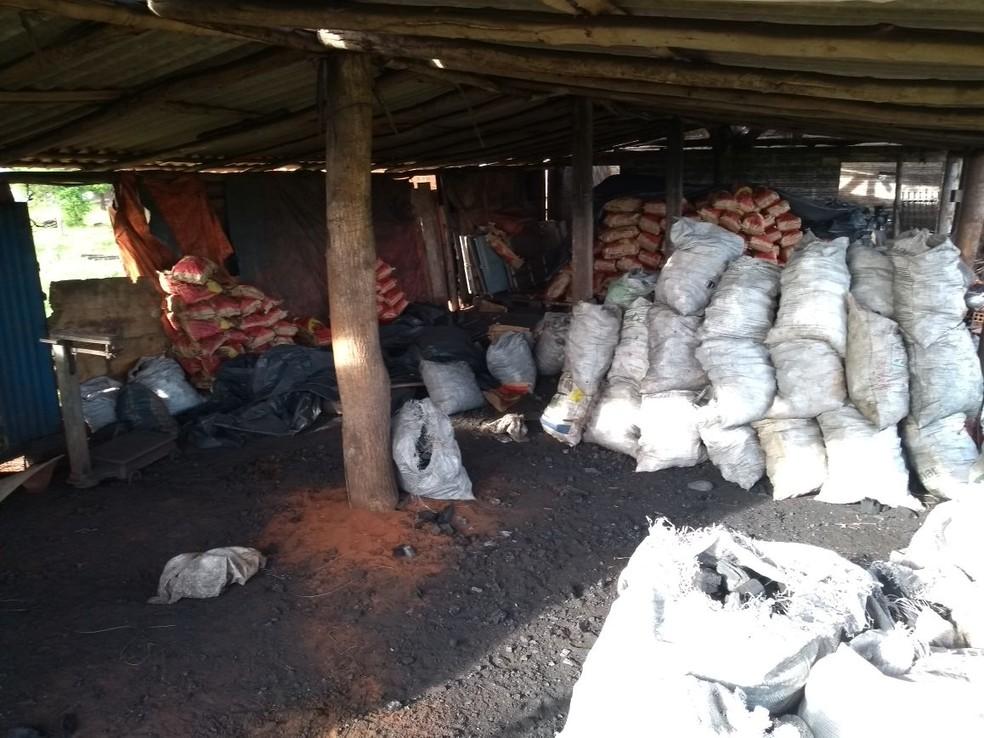 Dezenas de sacos de carvão vegetal estavam prontos para comercialização (Foto: Polícia Ambiental/Divulgação)