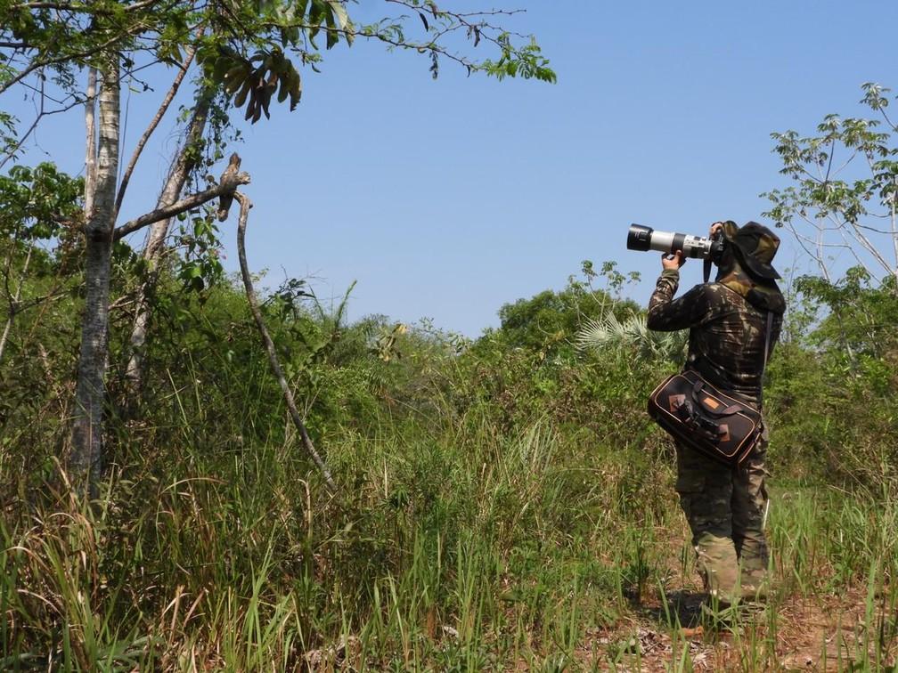 André Bittar fotografando um Urutau, no Pantanal de MS. — Foto:  Leonardo Copetti