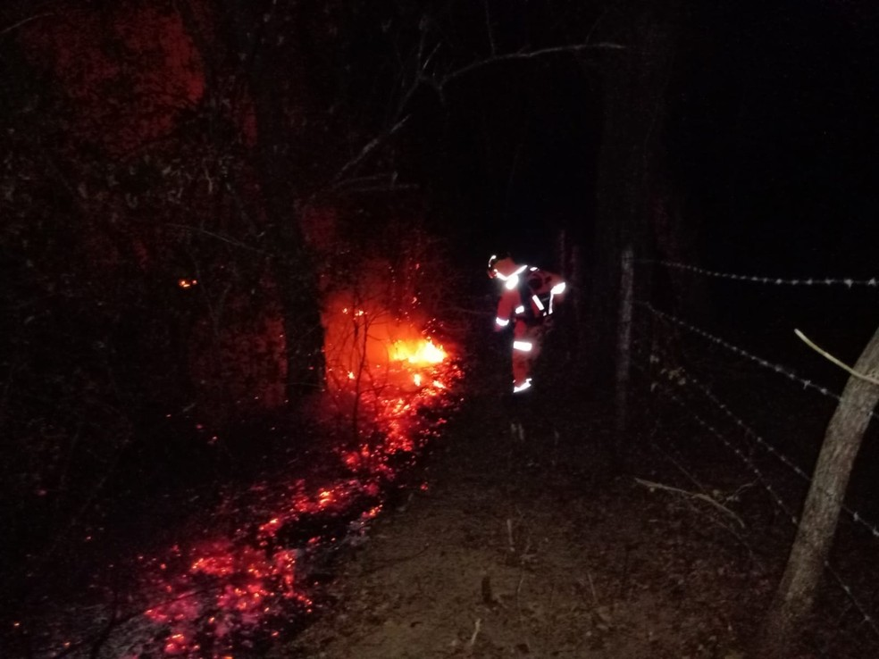 Bombeiros combatem incêndio pelo segundo dia — Foto: Corpo de Bombeiros
