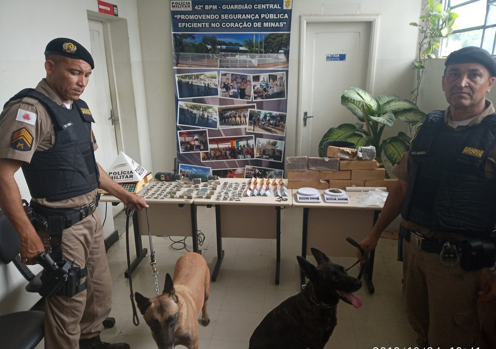 Bora e Jade ajudaram a PM a encontrar parte das drogas — Foto: Polícia Militar / Divulgação