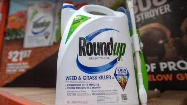Monsanto lançou o glifosato no mercado em 1974, sob o nome comercial Roundup — Foto: AFP via BBC