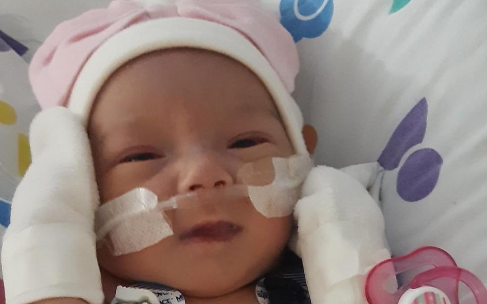 Elisa nasceu com meio coração e precisou passar por cirurgia aos 3 dias de vida, em hospital de São Paulo — Foto: Gabriella Castro/Arquivo pessoal