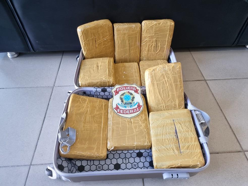 PF apreendeu 10,1 quilos de maconha em mala de cabeleireira de 23 anos, na quinta-feira (17), no Aeroporto do Recife — Foto: Polícia Federal/Divulgação