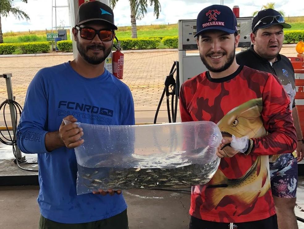 Repovoamento de peixes foi feito no Rio Aguapeí, em Rinópolis — Foto: Igor Augusto Gibara de Oliveira