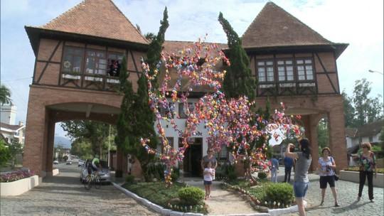 Via Brasil: árvore é decorada com cada vez mais cascas de ovos, em SC