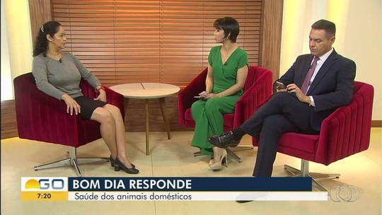 VÍDEOS: Bom Dia Goiás de quarta-feira, 19 de setembro