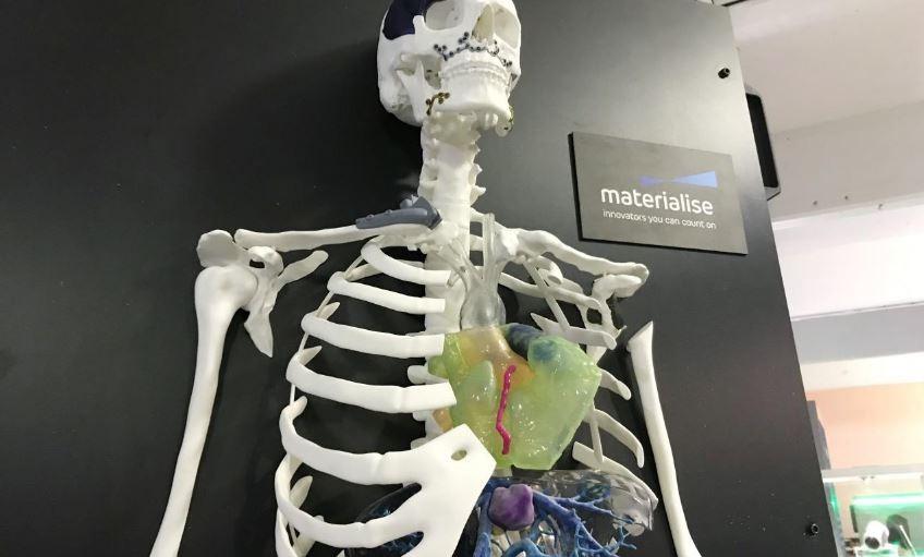 Esqueleto feito em impressora 3D mostra órgãos humanos, também impressos em 3D (Foto: REUTERS/Alwyn Scott)