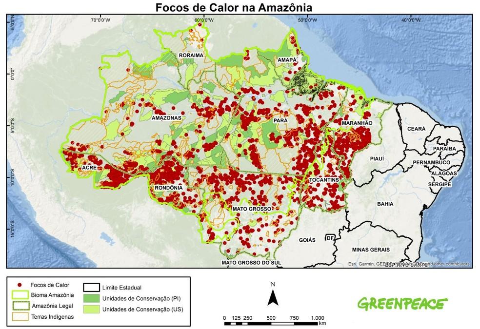 No acumulado, a Amazônia já perdeu cerca de 19,4% de sua cobertura florestal original — Foto: Divulgação/Greenpeace