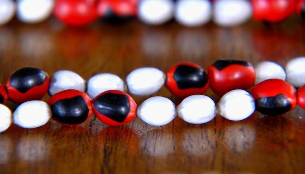 Sementes de tento e de Santa Luzia são utilizadas na produção de colares (Foto: Carlos Alberto Coutinho/TG)
