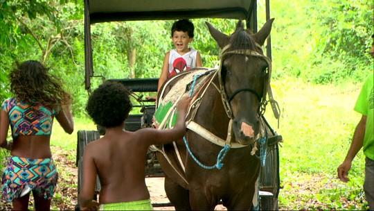 Um Programão diferente de verão pra criançada; visitar uma fazendinha.