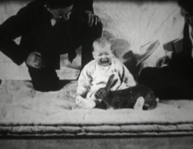 Cena do Experimento do Pequeno Albert (Foto: Reprodução/YouTube)