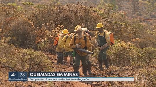 Tempo seco e calor são fatores que favorecem ocorrência de queimadas em Minas