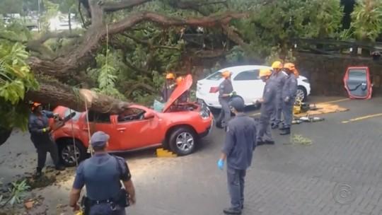 Corpo de rapaz que morreu após carro ser atingido por árvore é enterrado em Votuporanga