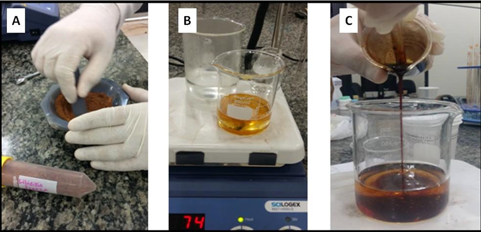 Sequência mostra produção de fórmulas com jucá — Foto: Ádria Américo