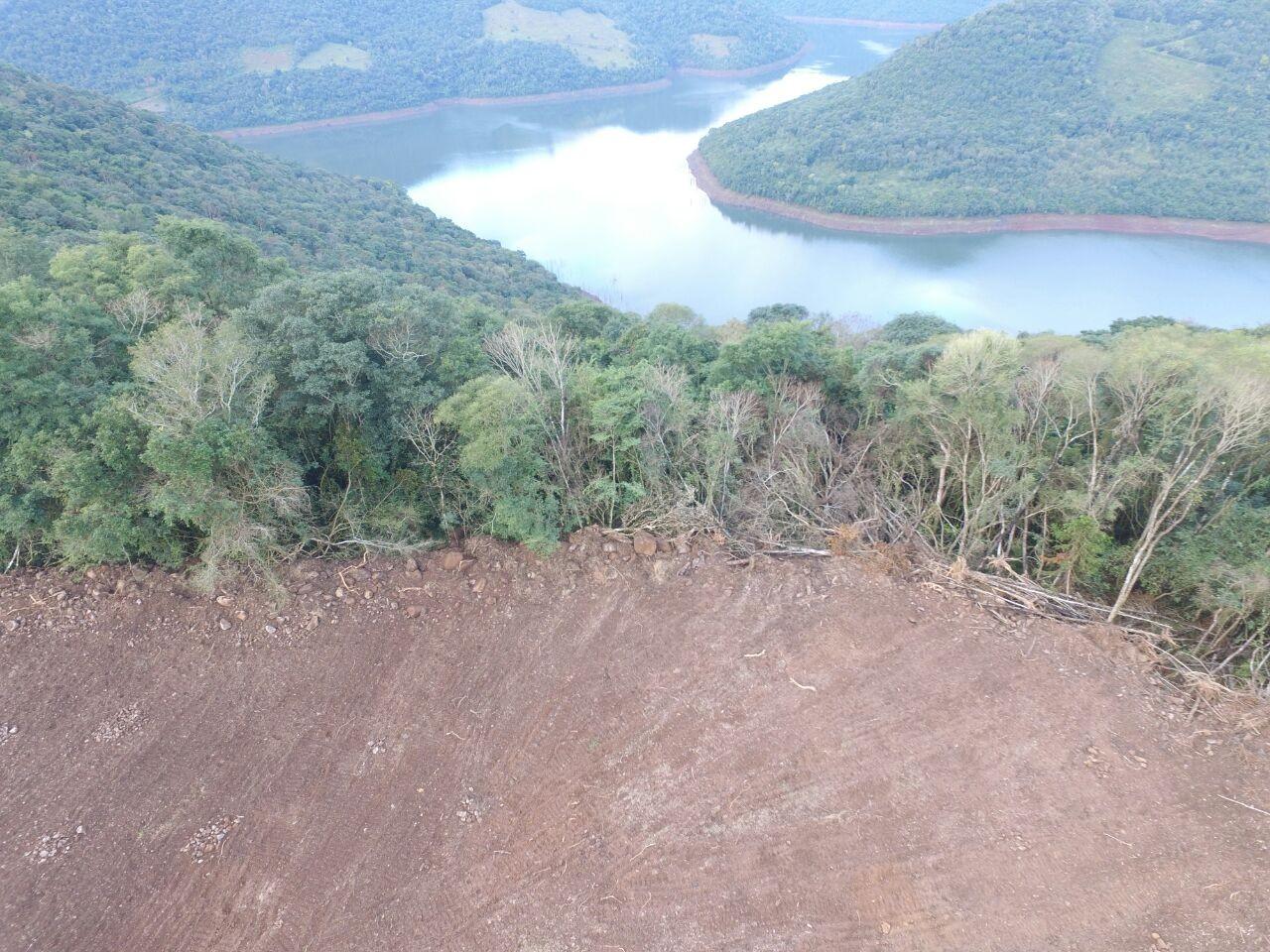 Desmatamento da Mata Atlântica em Alagoas cresce 2.243%, aponta pesquisa