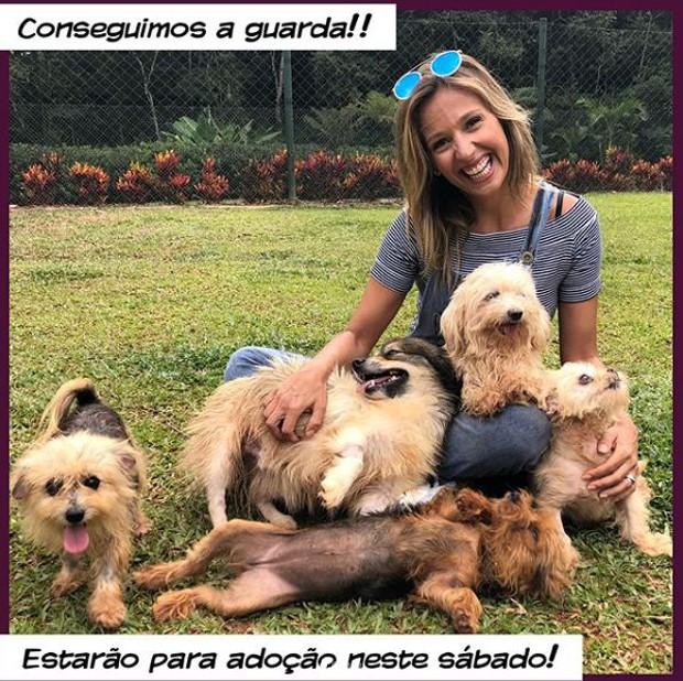 Luisa Mell promove feira de adoção de animais (Foto: Reprodução/Instagram)