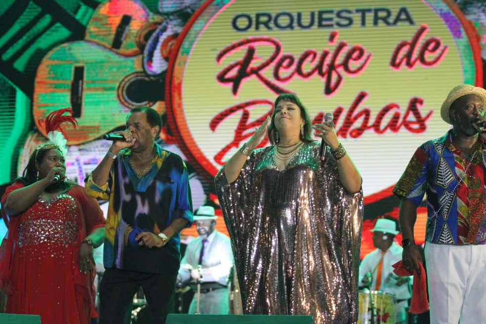 Samba foi um dos ritmos  do palco do Marco Zero neste domingo (11) (Foto: Marlon Costa/Pernambuco Press)