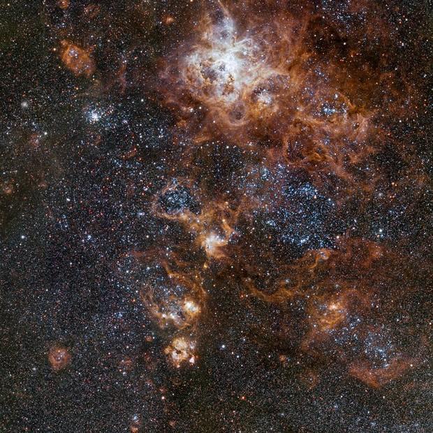 Nova imagem da Nebulosa da Tarântula  (Foto: ESO)