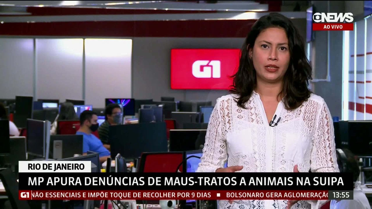 G1 em 1 Minuto: Ministério Público apura denúncias de maus-tratos a animais na Suipa