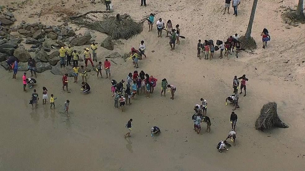 Voluntários retiram óleo de praias em Ipojuca, no Litoral Sul de Pernambuco — Foto: Reprodução/TV Globo