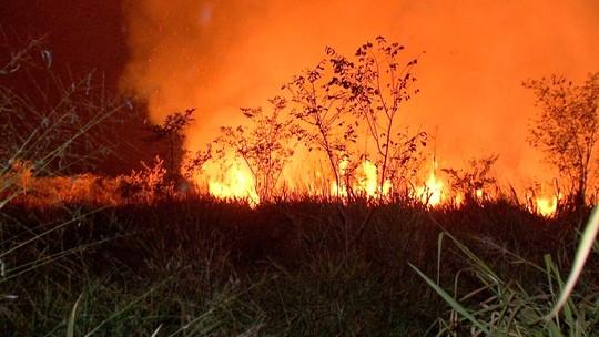 Com 5 incêndios florestais em andamento, MT pode estender período proibitivo de queimadas