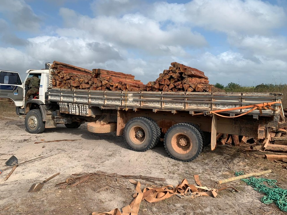 Polícia Federal apreendeu dois caminhões carregados de madeira durante operação no Maranhão — Foto: Divulgação/Polícia Federal