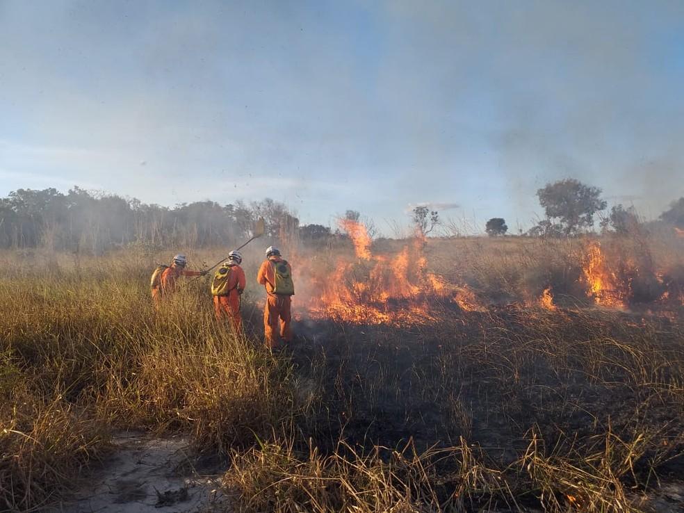 Incêndios destroem vegetação em bairros de Luís Eduardo Magalhães; FOTOS |  Bahia | G1