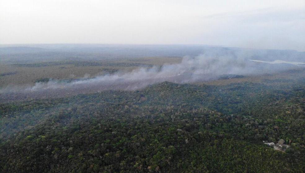 Imagens aéreas de uma das áreas afetadas pelas chamas em Alter do Chão — Foto: Brigada de Alter do Chão