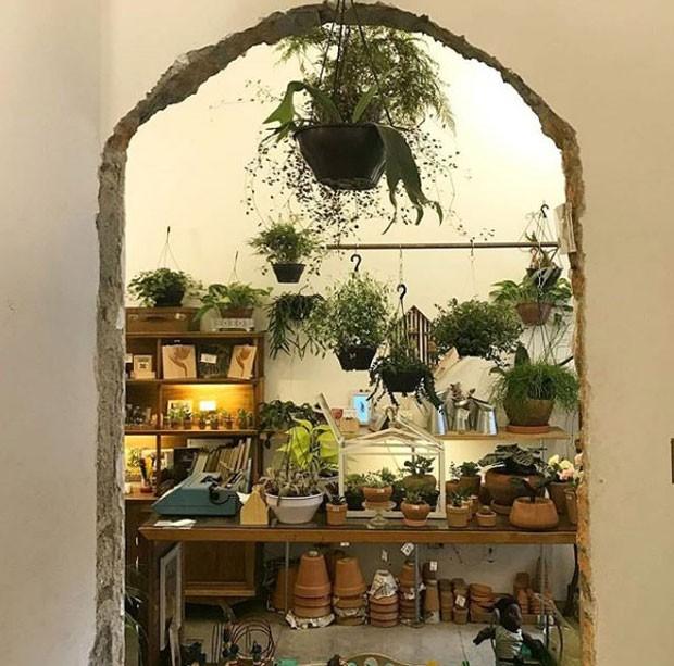 jardindocentro-instagram (Foto: Reprodução/ Instagram)