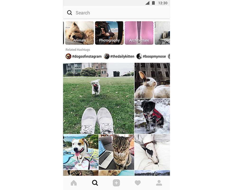 Aba Explorar traz busca de conteúdo por tema (Foto: Divulgação/Instagram)