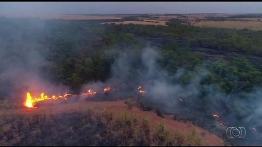 Polícia usa drone para mapear lavoura onde trabalhador rural morreu ao tentar conter queimada, em GO
