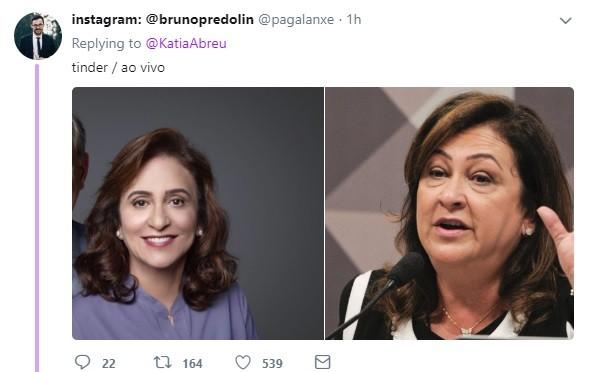 Meme com Kátia Abreu (Foto: reprodução)