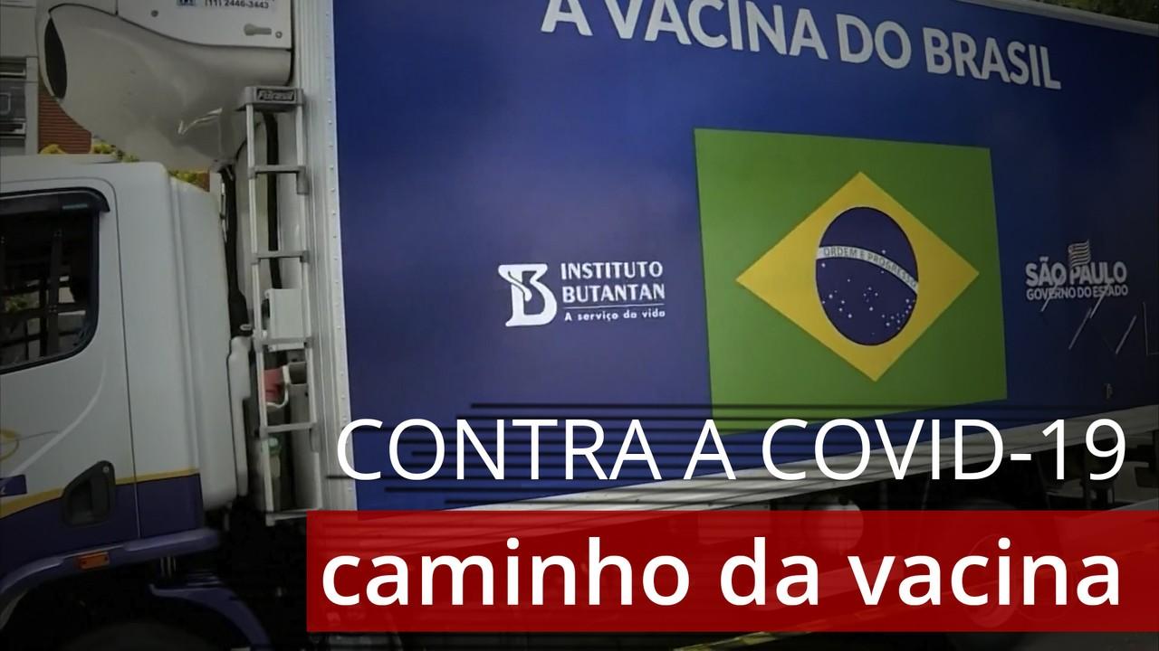 Entenda o caminho das vacinas contra a Covid-19 no Brasil