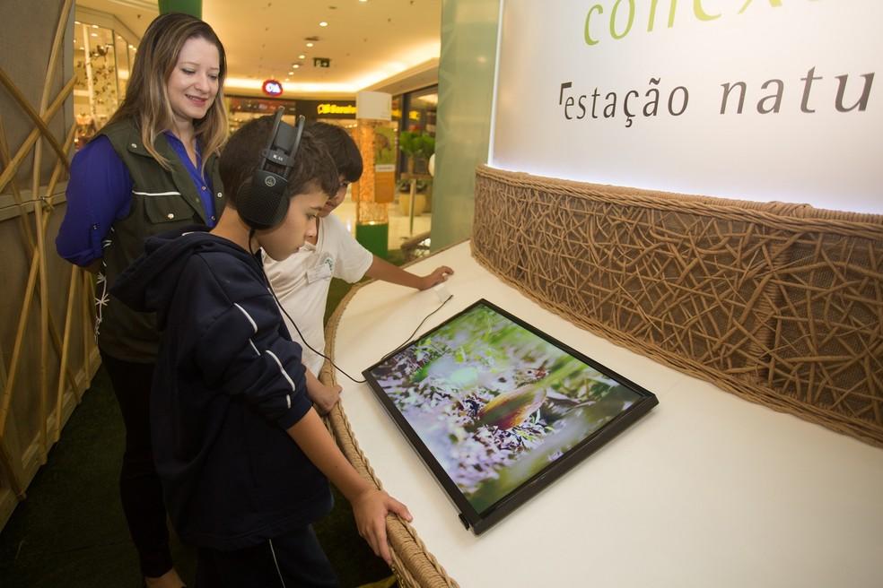 Mostra promove interação de usuários com a natureza através da tecnologia (Foto: Mila Maluhy)
