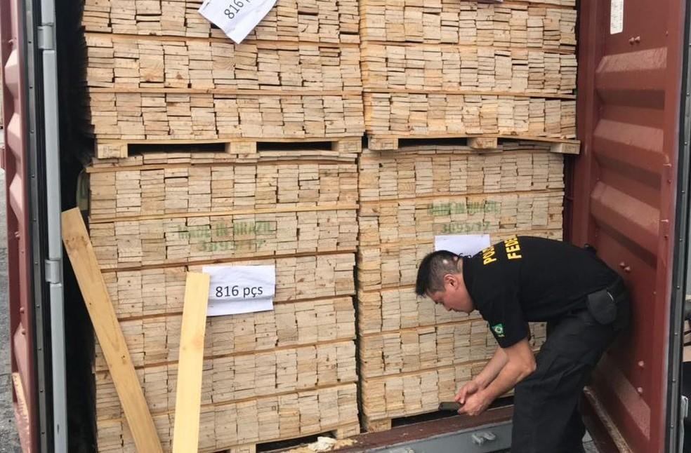 Contêiner é verificado no Porto de Itajaí (Foto: Polícia Federal/Divulgação)