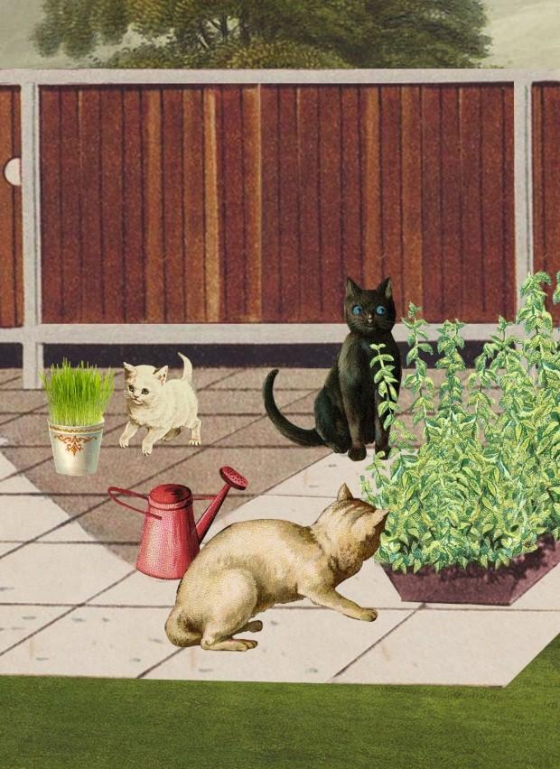 Ilustração A vida com pets, novembro de 2018 (Foto: Ilustração Yumi Shimada / Editora Globo)